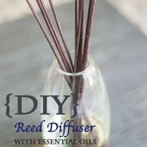 Diy Reed Diffuser Dōterra Everyday Australia