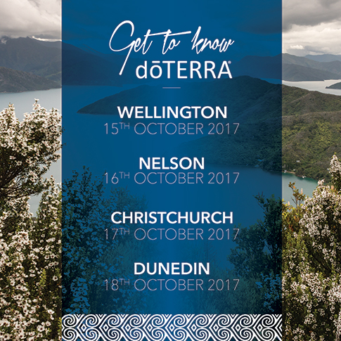 024 GTKD - 2017 - AGENDA NZ